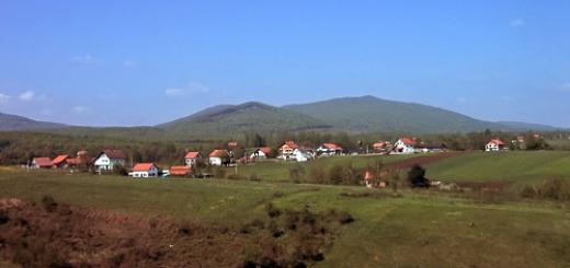 brajdic-selo